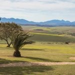 Langeberg Mountain View from Room